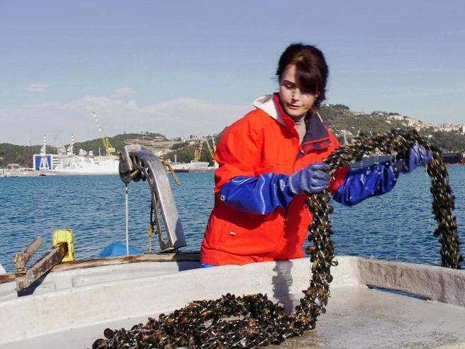 Nadia, dall'alba   in mare a raccogliere        cozze: «Un lavoro da uomo e me ne vanto» Video